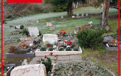 Saarbrücker Tierfriedhof: Wir beantragen Ersatzflächen