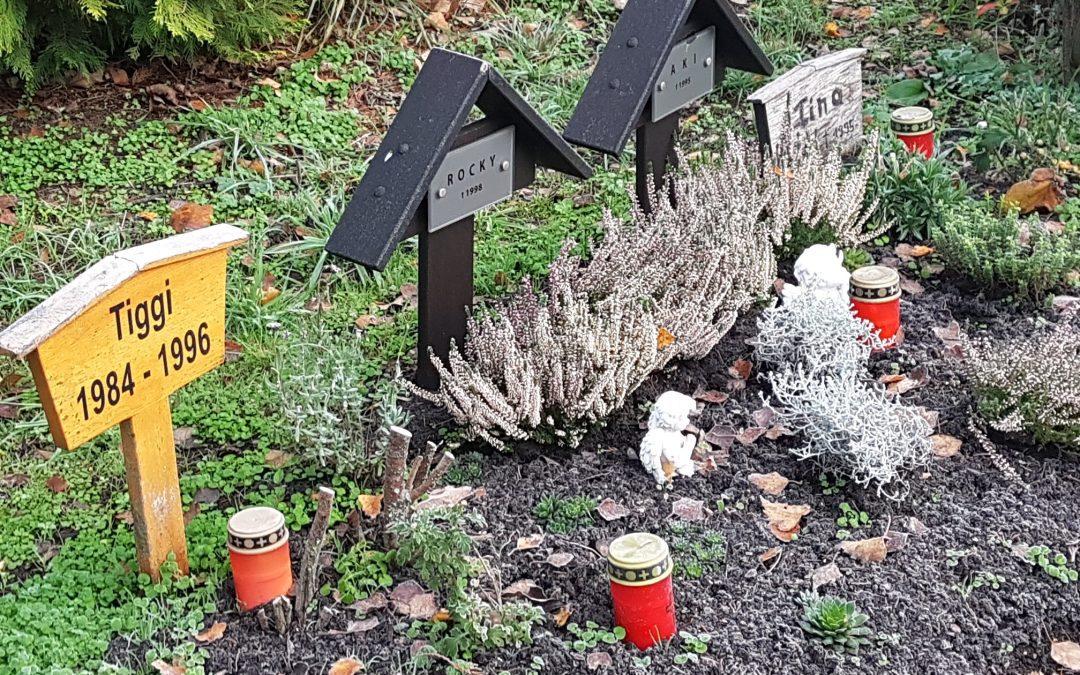 Saarbrücker Tierfriedhof bleibt Bestehen